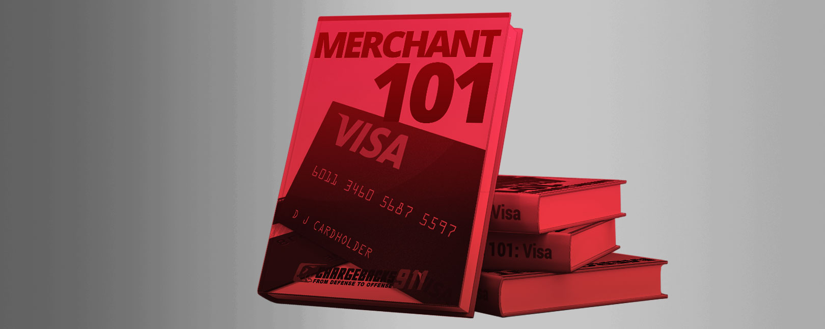 visa-merchant-101