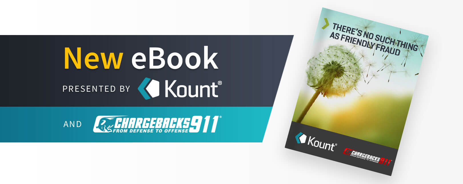 Kount ebook